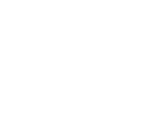Noble Finanial Group